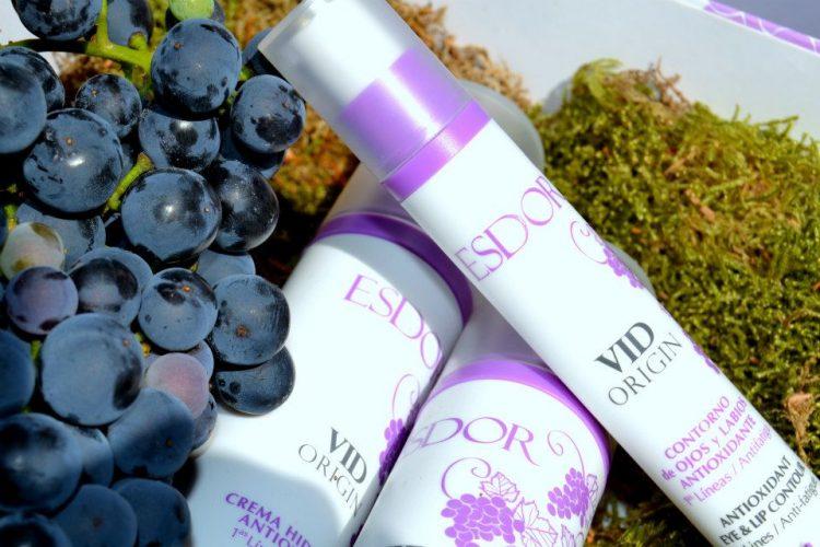 Antioxidantes naturales eficaces: polifenoles de uva tinta